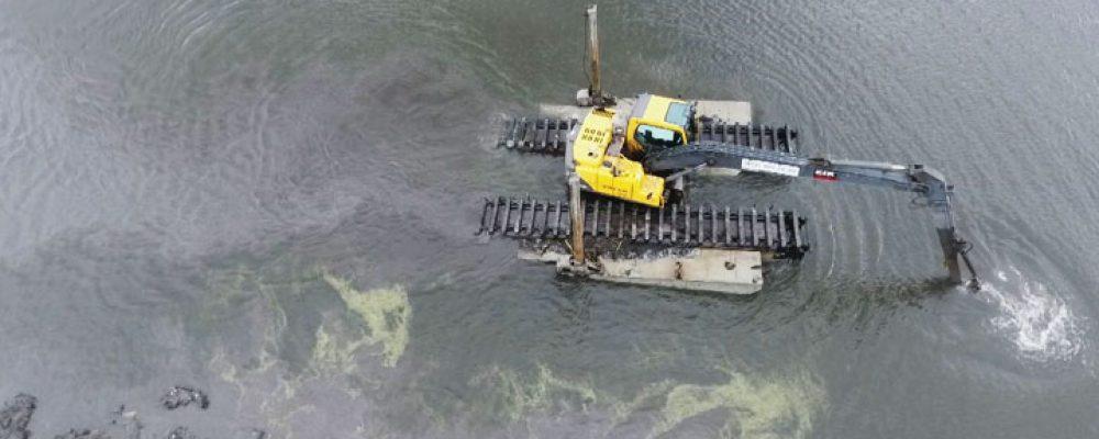 «Амфибия» превратит Масловский затон в Воронеже из болота в полноценный водоём