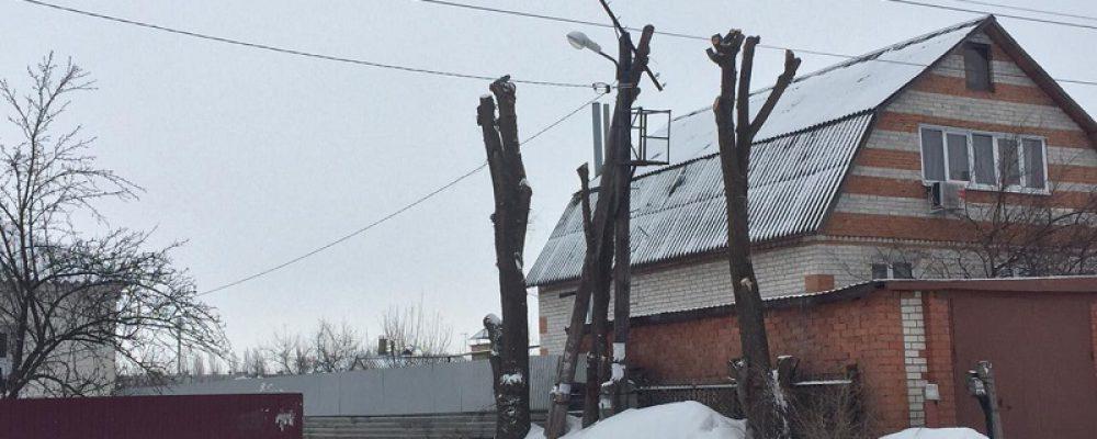 Управой Левобережного района организованы работы по санитарной обрезке и вырубке аварийно-опасных деревьев