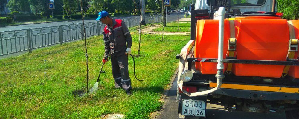 Среди основных видов работ, выполняемых в Левобережном районе на текущей неделе, – полив газонов, подметание и полив магистральных улиц и улиц частного сектора.