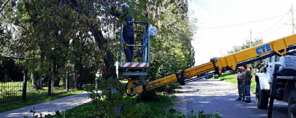 В Левобережном районе продолжаются работы по приведению в порядок зеленых насаждений