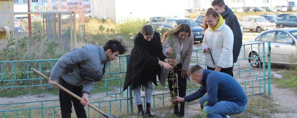 В Левобережном районе в рамках месячника благоустройства 07 октября жители домов №59 и №59а расположенных по улице Ростовская вышли на уборку прилегающей к домам территории.